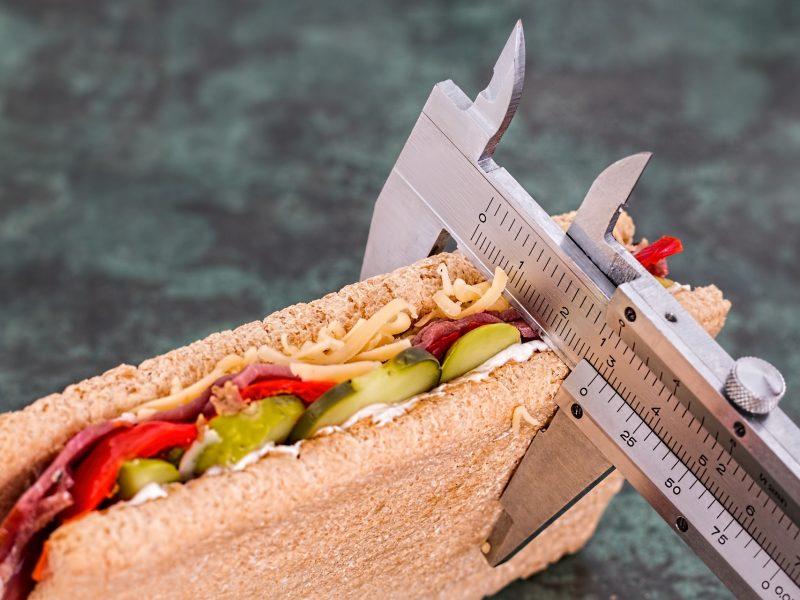 Introspectiva a los diversos tratamientos contra la obesidad
